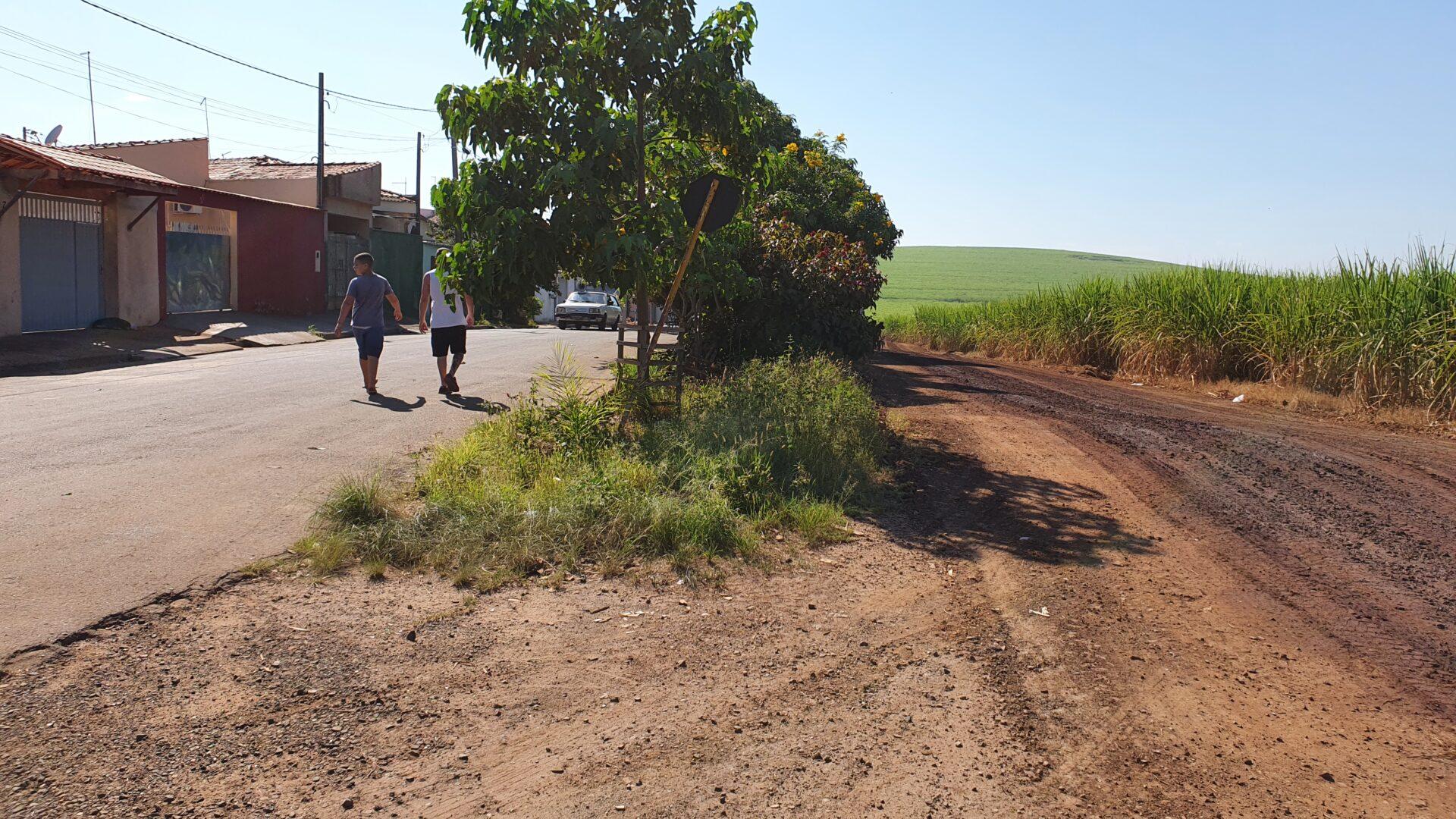 Estrada de terra paralela a casas do Luiz Massud Coury